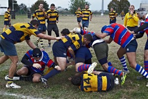 reportage-rugby (18)